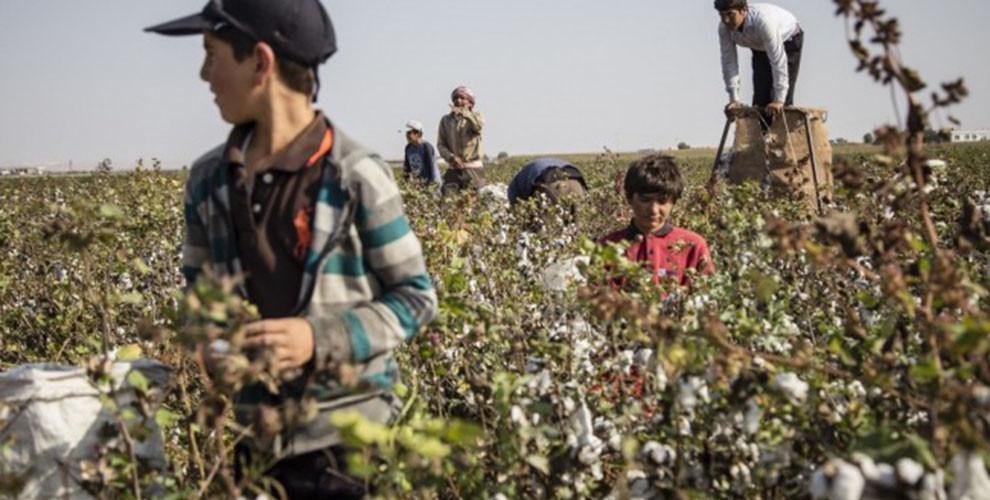 In der Türkei arbeiten minderjährige Flüchtlinge für